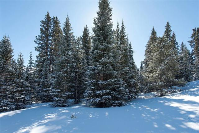 1630 State Hwy 9, Breckenridge, CO 80424 (MLS #S1007985) :: Resort Real Estate Experts