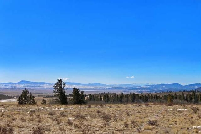 TBD Wheat Way, Fairplay, CO 80440 (MLS #S1007996) :: Resort Real Estate Experts
