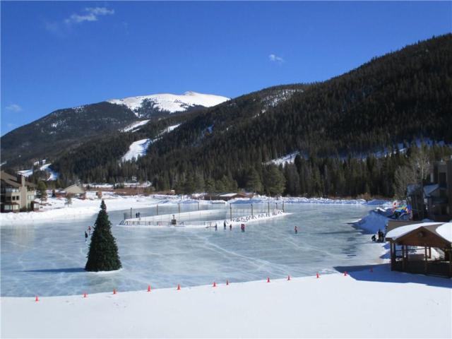 22080 Us Hwy 6 #1484, Keystone, CO 80435 (MLS #S1008011) :: Colorado Real Estate Summit County, LLC