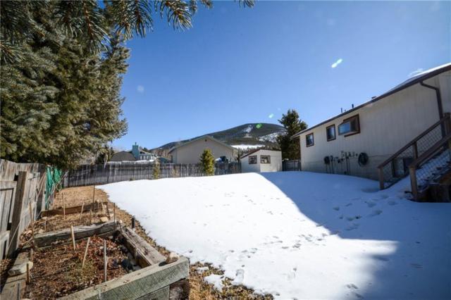 133 Big Elk Road, Dillon, CO 80435 (MLS #S1008054) :: Colorado Real Estate Summit County, LLC