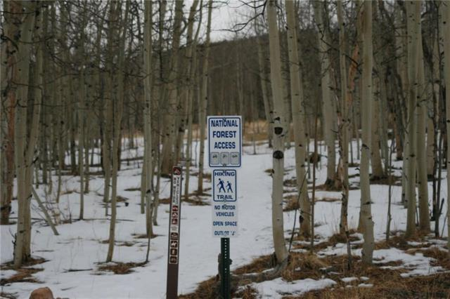 2772 High Creek Road, Fairplay, CO 80440 (MLS #S1008057) :: Resort Real Estate Experts