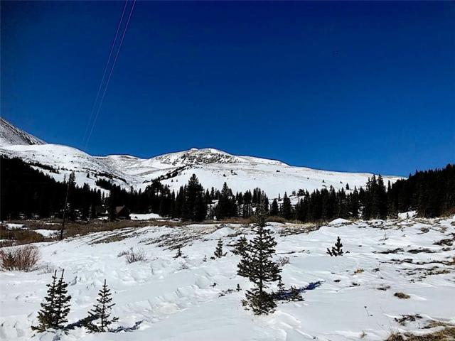 55 Lazy Rex Road, Alma, CO 80420 (MLS #S1008059) :: Colorado Real Estate Summit County, LLC