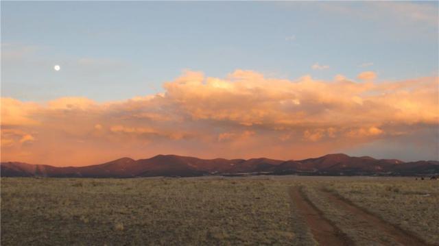 TBD County Road 15, Hartsel, CO 80449 (MLS #S1008090) :: Colorado Real Estate Summit County, LLC