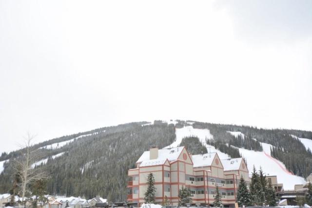 82 Wheeler Circle 217C-3, Copper Mountain, CO 80443 (MLS #S1008094) :: Colorado Real Estate Summit County, LLC