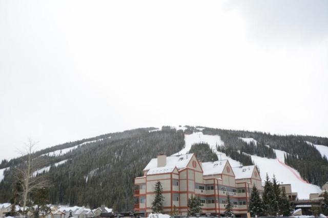 82 Wheeler Circle 314D-6, Copper Mountain, CO 80443 (MLS #S1008181) :: Colorado Real Estate Summit County, LLC
