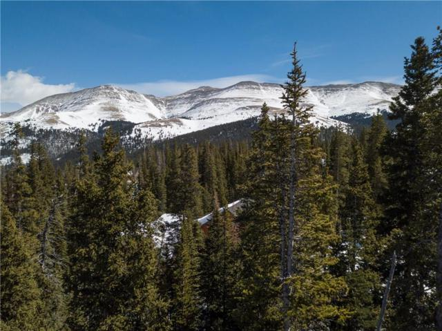562 Kimmes Lane, Breckenridge, CO 80424 (MLS #S1008221) :: Colorado Real Estate Summit County, LLC