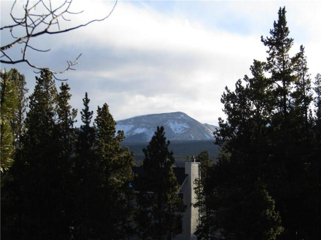 0 Ponderosa Road, Alma, CO 80420 (MLS #S1008260) :: Resort Real Estate Experts