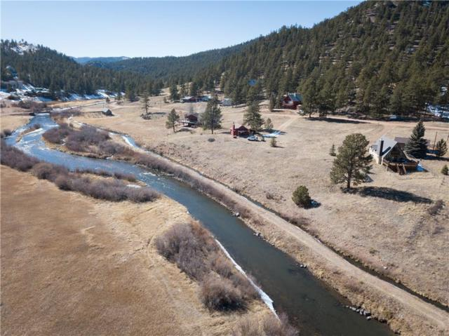 202 W Platte Road, LAKE GEORGE, CO 80827 (MLS #S1008304) :: Colorado Real Estate Summit County, LLC