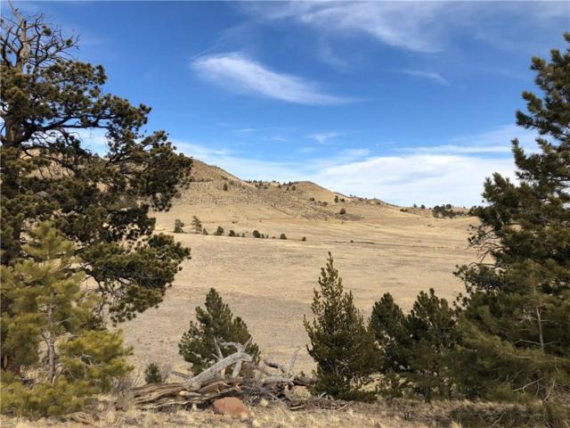 1842 Ranger Hill Road, Hartsel, CO 80449 (MLS #S1008369) :: Colorado Real Estate Summit County, LLC