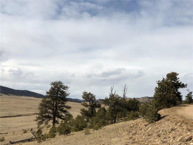 934 Larimer Drive, Hartsel, CO 80449 (MLS #S1008371) :: Colorado Real Estate Summit County, LLC