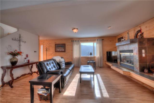 1103 Quartzville Road, Alma, CO 80420 (MLS #S1008431) :: Colorado Real Estate Summit County, LLC