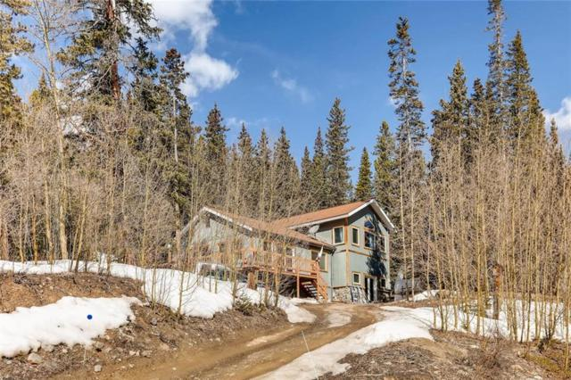 197 Peterson Drive, Alma, CO 80420 (MLS #S1008459) :: Colorado Real Estate Summit County, LLC