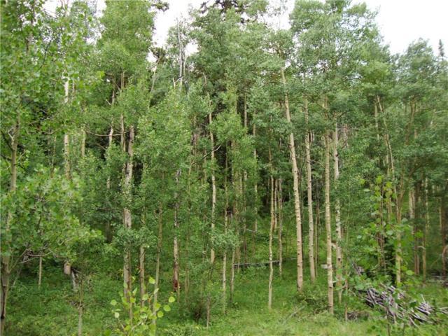 37 Mine Road, Alma, CO 80420 (MLS #S1008486) :: Colorado Real Estate Summit County, LLC