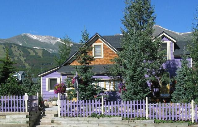 205 S French Street S, Breckenridge, CO 80424 (MLS #S1008535) :: Colorado Real Estate Summit County, LLC