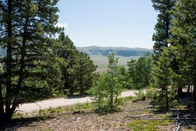 Lot 498 Redhill Road, Fairplay, CO 80440 (MLS #S1008553) :: Colorado Real Estate Summit County, LLC