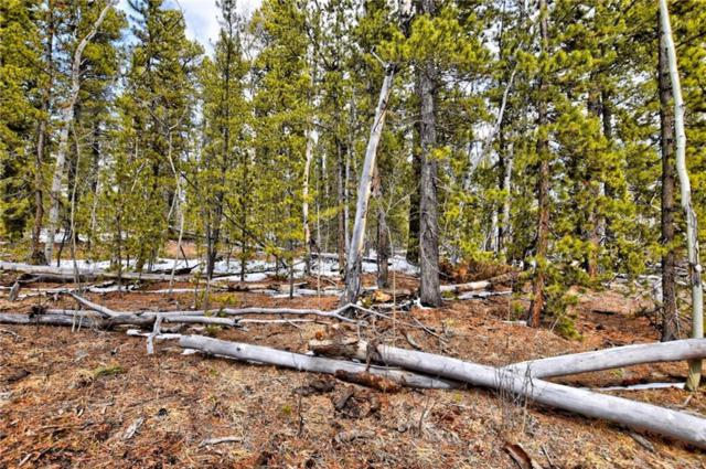 93 Muhly Court, Alma, CO 80420 (MLS #S1008640) :: Colorado Real Estate Summit County, LLC
