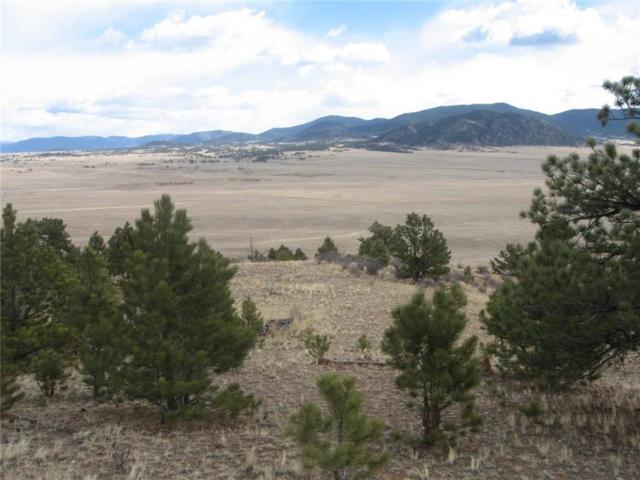 5655 Jackson Road, Hartsel, CO 80449 (MLS #S1008642) :: Colorado Real Estate Summit County, LLC