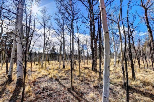 TBD Eagle Road, Jefferson, CO 80456 (MLS #S1008643) :: Colorado Real Estate Summit County, LLC