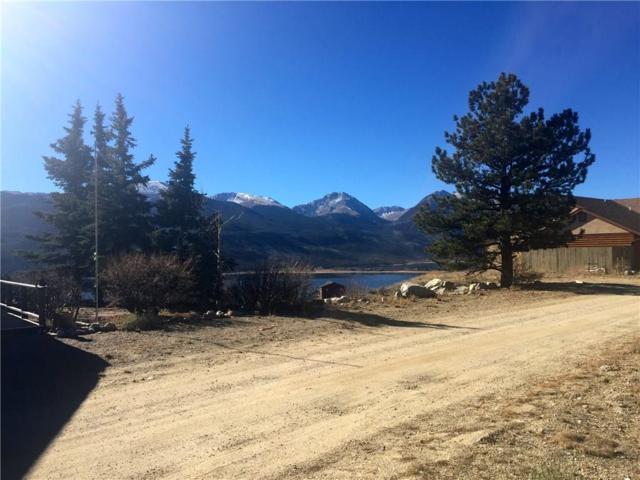 389 Twin Peaks, Leadville, CO 80461 (MLS #S1008699) :: Colorado Real Estate Summit County, LLC