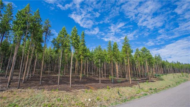 663 Discovery Hill Drive, Breckenridge, CO 80424 (MLS #S1008714) :: Colorado Real Estate Summit County, LLC