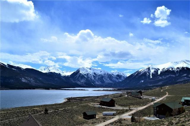 255 Mt Hope Dr Drive, Twin Lakes, CO 81251 (MLS #S1008749) :: Resort Real Estate Experts