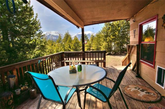 166 B Road, Silverthorne, CO 80498 (MLS #S1008778) :: Colorado Real Estate Summit County, LLC