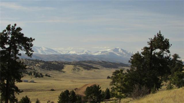 1066 La Plata Drive, Hartsel, CO 80449 (MLS #S1008835) :: Colorado Real Estate Summit County, LLC