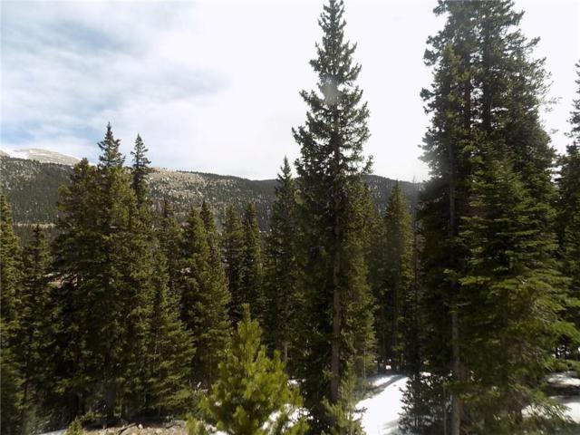 1392 Quartzville Road, Alma, CO 80420 (MLS #S1008838) :: Colorado Real Estate Summit County, LLC