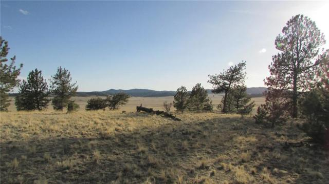TBD Arapahoe Trail, Hartsel, CO 80449 (MLS #S1008852) :: Resort Real Estate Experts