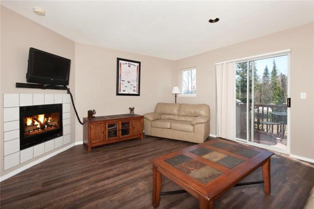 14 Spyglass Lane #14, Silverthorne, CO 80498 (MLS #S1008899) :: Colorado Real Estate Summit County, LLC
