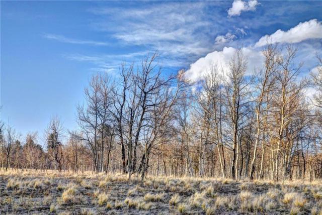 6014 Remington Road, Como, CO 80432 (MLS #S1008910) :: Colorado Real Estate Summit County, LLC