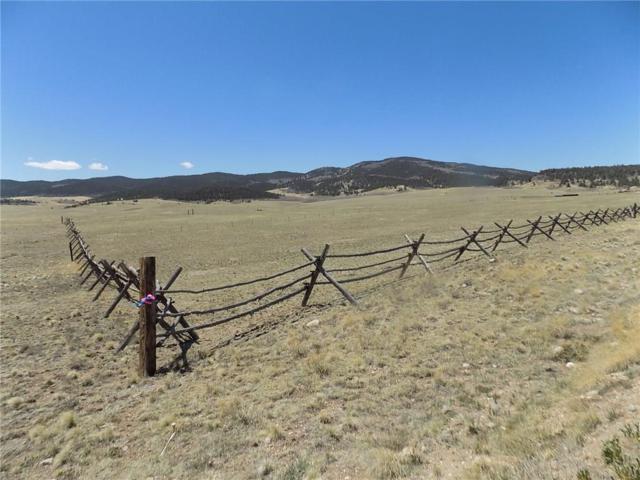 775 Singletree Court, Hartsel, CO 80449 (MLS #S1008973) :: Colorado Real Estate Summit County, LLC