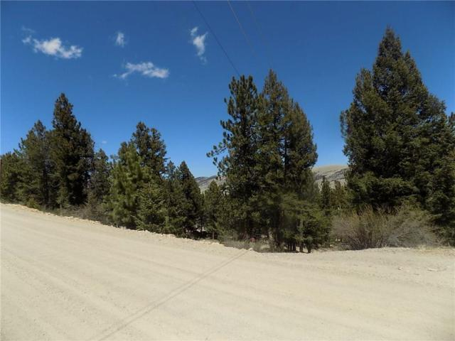 TBD Redhill Road, Fairplay, CO 80440 (MLS #S1008974) :: Colorado Real Estate Summit County, LLC