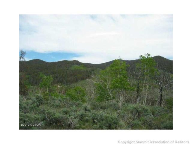 1000 County Rd 2412, Kremmling, CO 80459 (MLS #S1008983) :: Colorado Real Estate Summit County, LLC