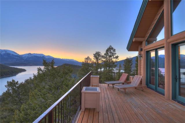 317 High Meadow Drive, Dillon, CO 80435 (MLS #S1008985) :: Resort Real Estate Experts