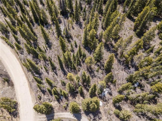 275 Mine Dump Road, Alma, CO 80420 (MLS #S1008992) :: Colorado Real Estate Summit County, LLC