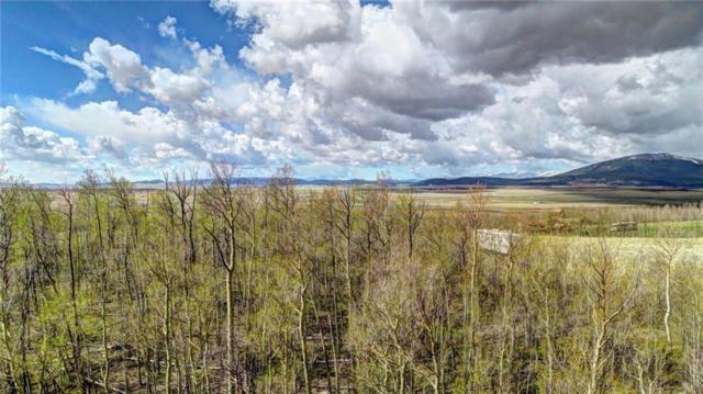 879 Georgia Drive, Jefferson, CO 80456 (MLS #S1009024) :: Colorado Real Estate Summit County, LLC