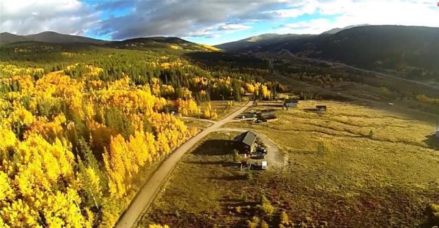 600 Edgewood Road, Alma, CO 80420 (MLS #S1009025) :: Colorado Real Estate Summit County, LLC