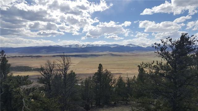 2091 Middle Fork Vista, Fairplay, CO 80440 (MLS #S1009037) :: Colorado Real Estate Summit County, LLC