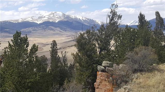 TBD Middle Fork Vista, Fairplay, CO 80440 (MLS #S1009038) :: Resort Real Estate Experts