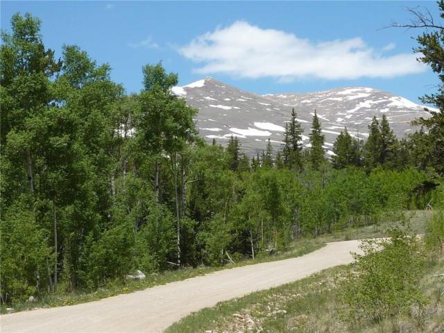 845 Adventure Road, Alma, CO 80420 (MLS #S1009085) :: Colorado Real Estate Summit County, LLC