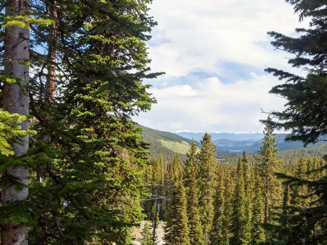474 Cnty Rd 672, Breckenridge, CO 80424 (MLS #S1009090) :: Resort Real Estate Experts