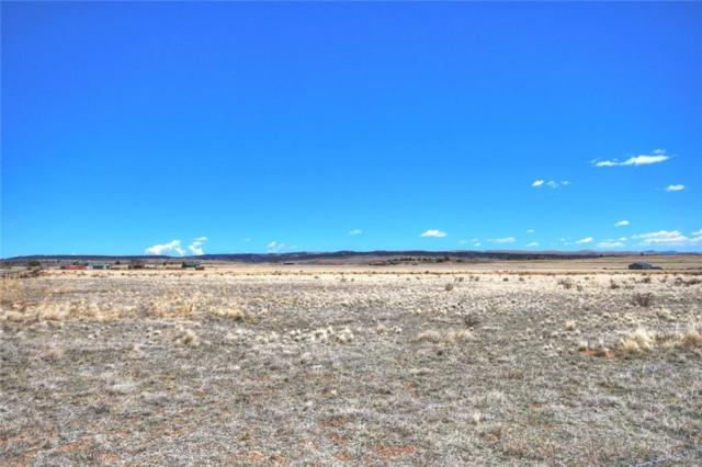 Lot 20 Ct. Road 18 Road, Fairplay, CO 80440 (MLS #S1009096) :: Colorado Real Estate Summit County, LLC