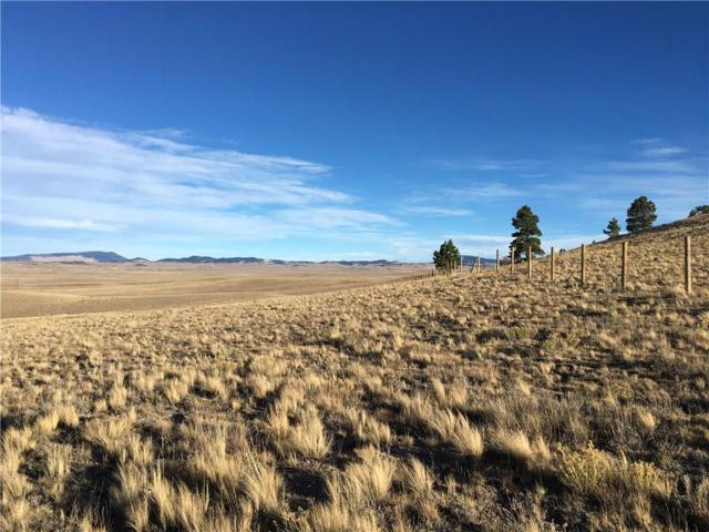 7013 Ranch Road, Hartsel, CO 80449 (MLS #S1009111) :: Resort Real Estate Experts