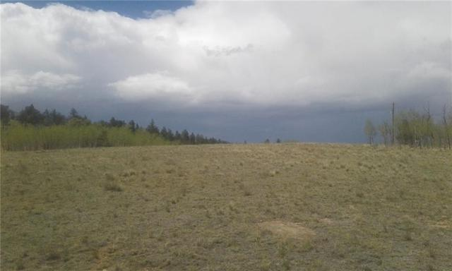 577 Pronghorn Drive, Como, CO 80432 (MLS #S1009176) :: Colorado Real Estate Summit County, LLC