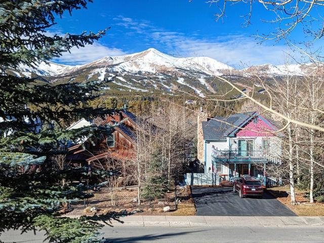 302 S High Street S #4, Breckenridge, CO 80424 (MLS #S1009185) :: Colorado Real Estate Summit County, LLC