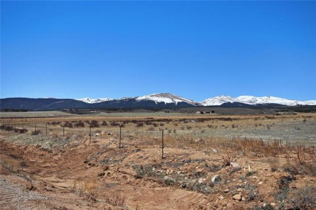 LOT 10 Ct. Road 18 Road, Fairplay, CO 80440 (MLS #S1009186) :: Colorado Real Estate Summit County, LLC