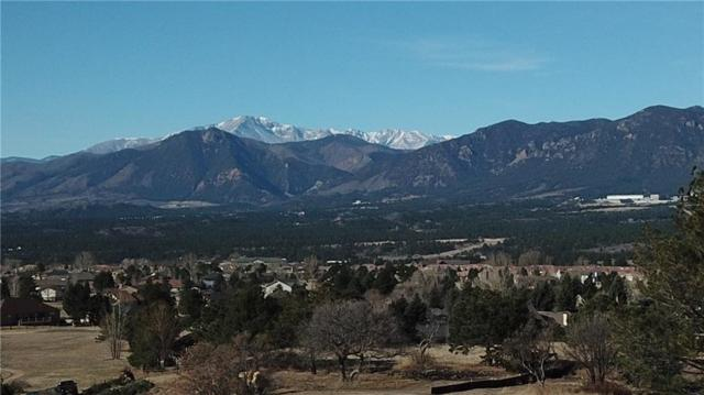 310 Silver Rock Place, Other, CO 80921 (MLS #S1009222) :: Colorado Real Estate Summit County, LLC