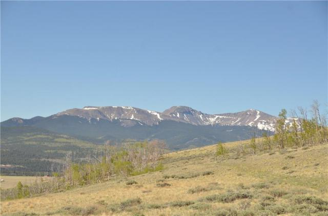 685 Breakneck Pass Road, Fairplay, CO 80440 (MLS #S1009240) :: Colorado Real Estate Summit County, LLC