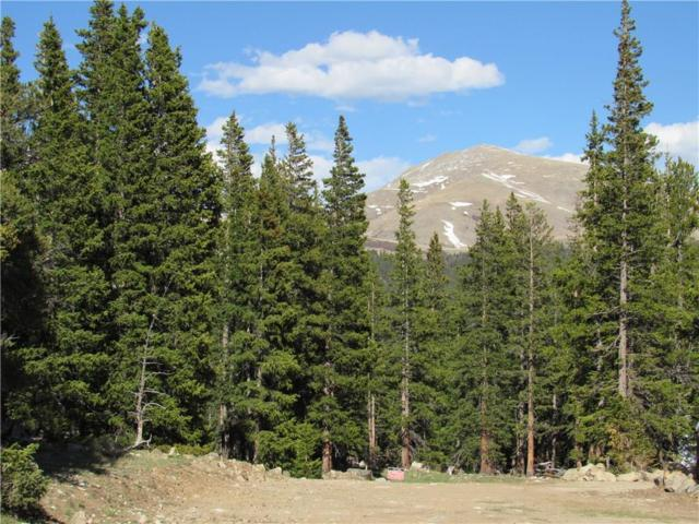 65 Lode Drive, Alma, CO 80420 (MLS #S1009299) :: Resort Real Estate Experts